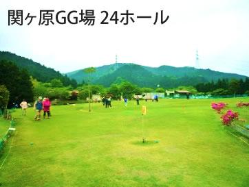 G-006 岐阜県・長良川温泉【宿泊】 ホテルパーク